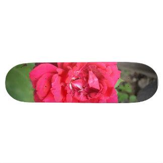 Pink Rose Skateboard