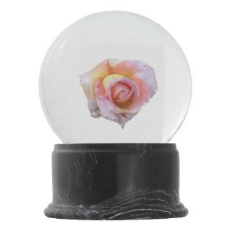 Pink Rose Snow Globe