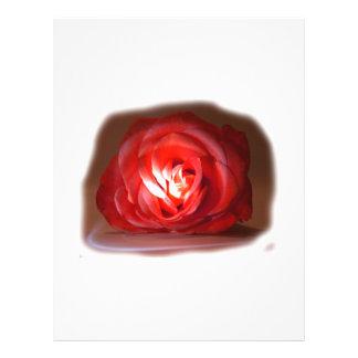 Pink Rose Spotlighted Iimage Flyer
