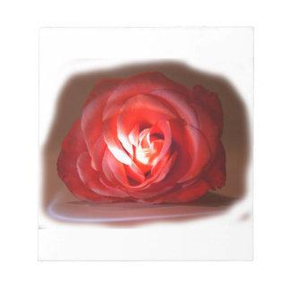 Pink Rose Spotlighted Iimage Memo Note Pad