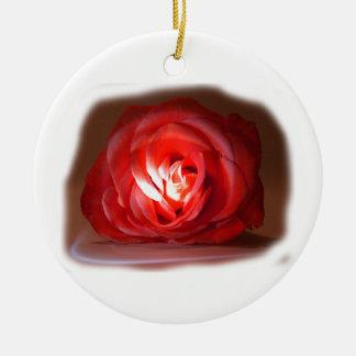Pink Rose Spotlighted Iimage Ornament