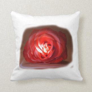 Pink Rose Spotlighted Iimage Throw Pillows