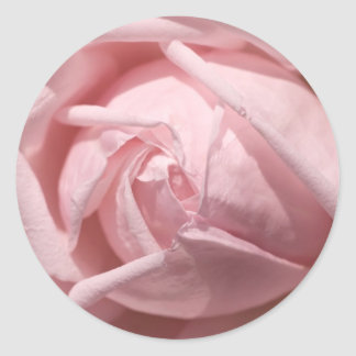 Pink Rose Stickers