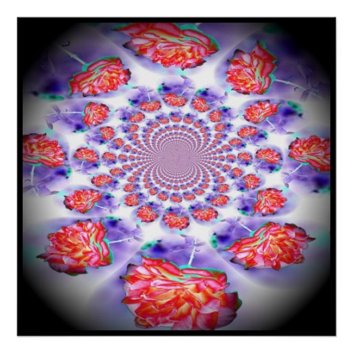Pink Rose Swirling Poster
