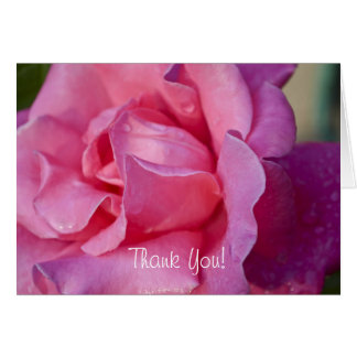 Pink Rose Thank You Greeting Card