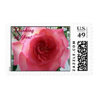 Pink Rose, Thinking of You! Postage