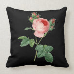 "Pink rose vintage botanical illustration on black throw pillow<br><div class=""desc"">Rosa Centifolia botanical illustration created by Pierre-Joseph Redoute (1759-1840) and adapted by YANKAdesigns!</div>"