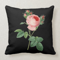 Pink rose vintage botanical illustration on black throw pillow