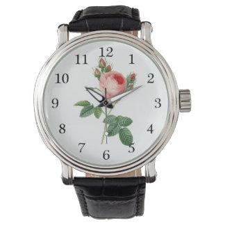 Pink rose vintage botanical illustration wristwatch