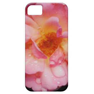 Pink Rose w/ Dew Drops Black Background iPhone 5 Cases