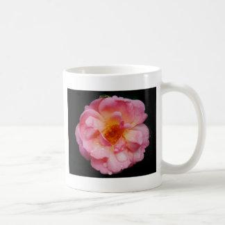 Pink Rose w/ Dew Drops Black Background Mug