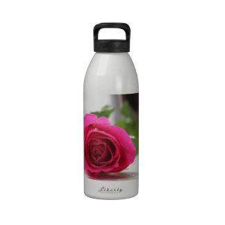 Pink Rose Reusable Water Bottles