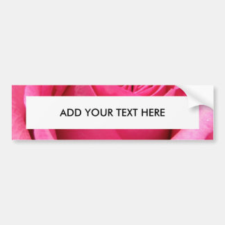 Pink Rose Wedding Photo Bumper Sticker