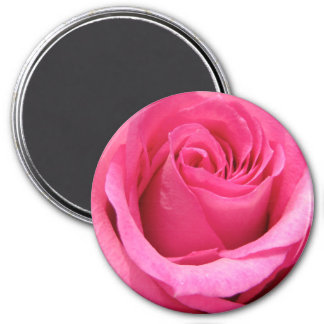Pink Rose Wedding Photo Fridge Magnet