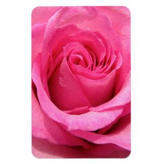 Pink Rose Wedding Photo Magnets