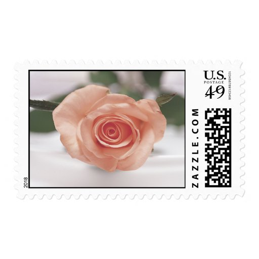 Pink Rose wedding postage
