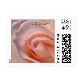 Pink Rose Wedding Postage Stamp Postage Stamps