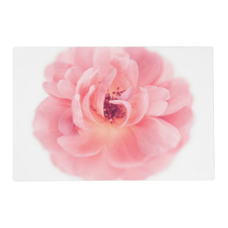 Pink Rose White Roses Flower Flowers Floral Placemat