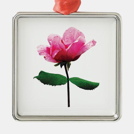 Pink Rose with Dew Square Metal Christmas Ornament