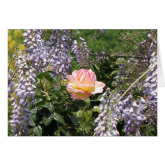 Pink Rose with Purple Wisteria Blank Art Card