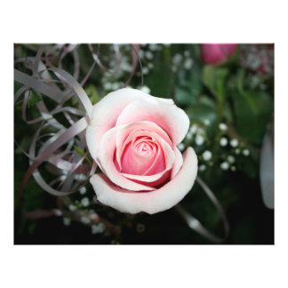 pink rose with ribbon close up flower custom flyer