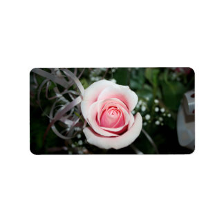 pink rose with ribbon close up flower address label