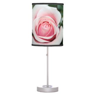 pink rose with ribbon close up flower desk lamp