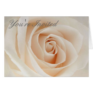 Pink Rose, You're Invited Greeting Card