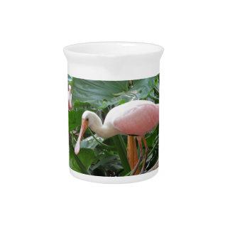 Pink Roseate Spoonbill Bird Pitcher