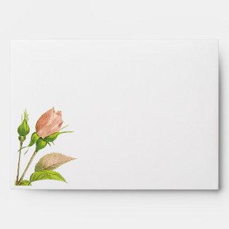 Pink Rosebud Botanical Roses A7 Envelope