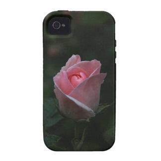 Pink rosebud iPhone 4 case