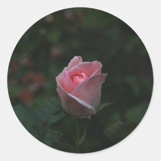 Pink rosebud classic round sticker