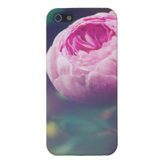 Pink Rosebud, Glowing Blue, Floral Photograph Cases For iPhone 5