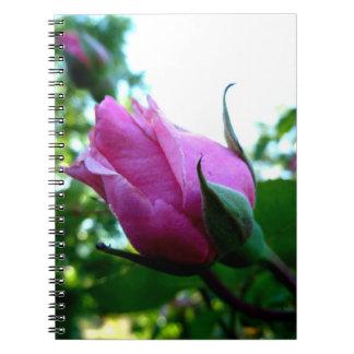 Pink Rosebud Notebook