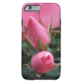 Pink rosebuds tough iPhone 6 case