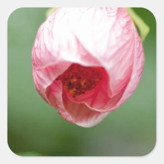 pink Rosebuds Square Sticker