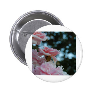 Pink Roses 2 Inch Round Button
