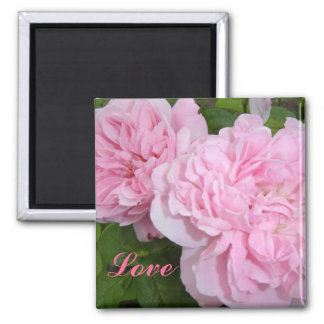 Pink Roses 2 Inch Square Magnet