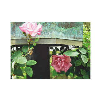 Pink Roses Against Weathered Birdhouse Canvas Print