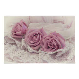 Pink Roses And Lace Poster