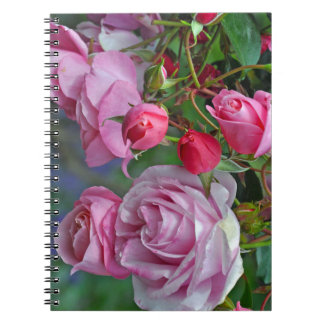 Pink roses and rosebuds notebook