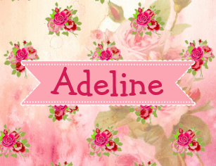 9547457d6 Pink Roses Baby Girl Name Pacifier Personalized