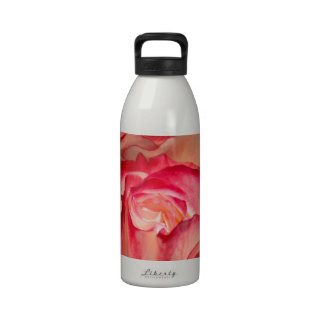 Pink roses background water bottle