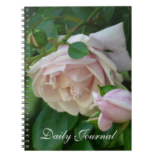 Pink Roses-Daily Journal
