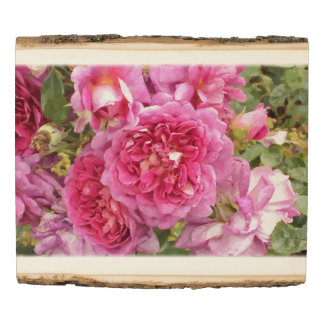 Pink Roses, Floral Wood Panel