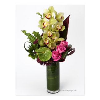 Pink roses, green anthuriums, cymbidium orchids postcard