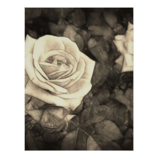 Pink Roses in Anzures 1 Antiqued Poster