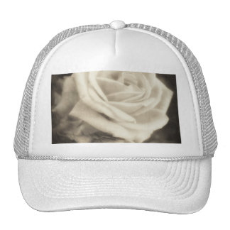Pink Roses in Anzures 2 Antiqued Trucker Hat