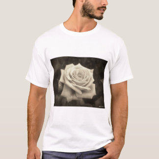 Pink Roses in Anzures 4 Antiqued T-Shirt