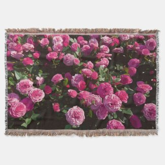 Pink roses in the garden are blooming throw blanket